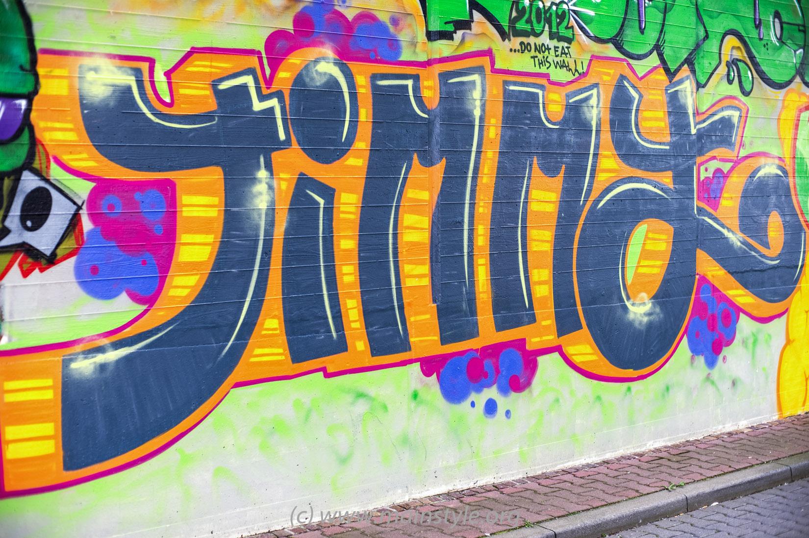 Frankfurt-Höchst_Graffiti_Süwag-Wall_2012 (33 von 35)