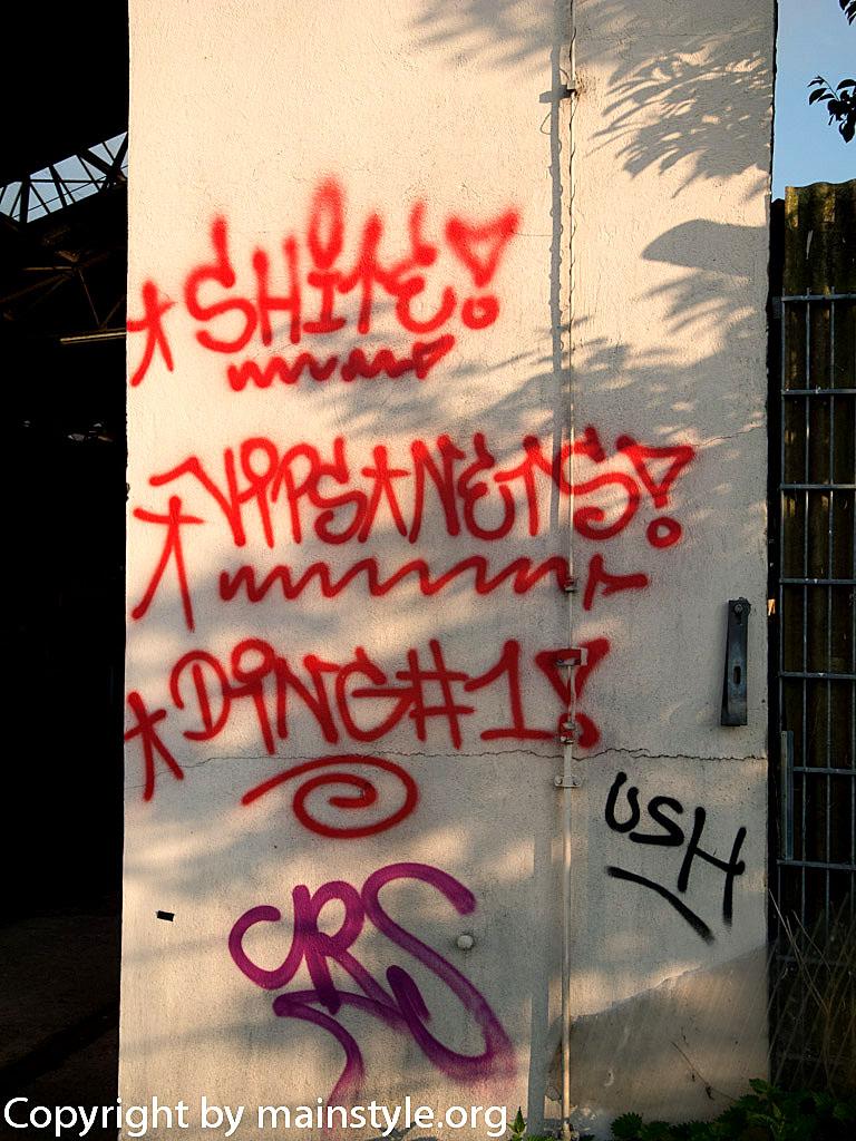 Frankfurt_Graffiti_U-Bahn_Straßenbahn_2010-2013-1216