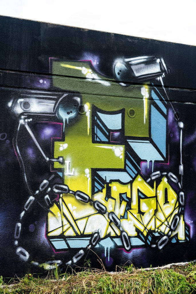 Graffiti_MOS_DBL_RAST_2016-3
